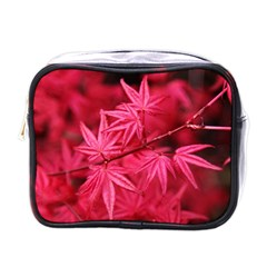 Red Autumn Mini Travel Toiletry Bag (One Side)