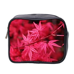 Red Autumn Mini Travel Toiletry Bag (Two Sides)