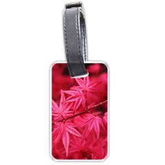 Red Autumn Luggage Tag (One Side)
