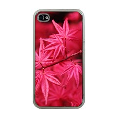 Red Autumn Apple iPhone 4 Case (Clear)