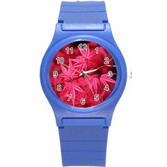 Red Autumn Plastic Sport Watch (Small)