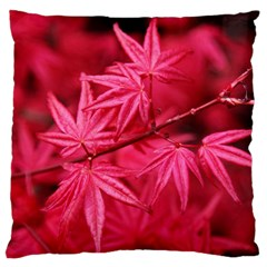 Red Autumn Large Cushion Case (one Side)
