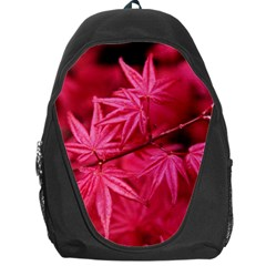 Red Autumn Backpack Bag