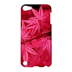 Red Autumn Apple iPod Touch 5 Hardshell Case