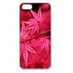 Red Autumn Apple Seamless iPhone 5 Case (Clear)