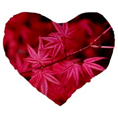 Red Autumn 19  Premium Heart Shape Cushion