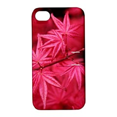 Red Autumn Apple Iphone 4/4s Hardshell Case With Stand