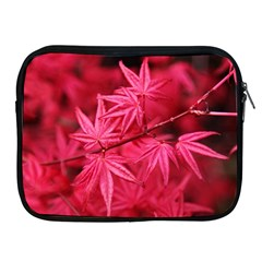 Red Autumn Apple iPad 2/3/4 Zipper Case