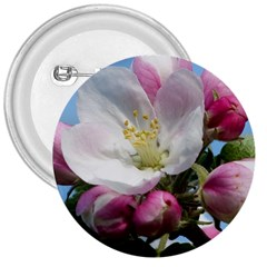Apple Blossom  3  Button