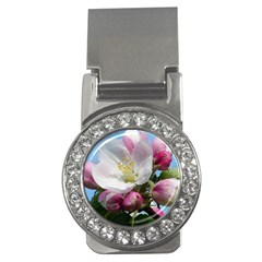 Apple Blossom  Money Clip (CZ)