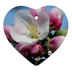 Apple Blossom  Heart Ornament (Two Sides)
