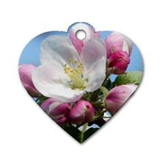 Apple Blossom  Dog Tag Heart (Two Sided)