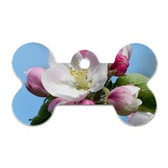 Apple Blossom  Dog Tag Bone (one Sided)