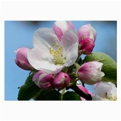 Apple Blossom  Glasses Cloth (Large)