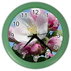 Apple Blossom  Wall Clock (Color)