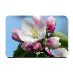 Apple Blossom  Small Door Mat