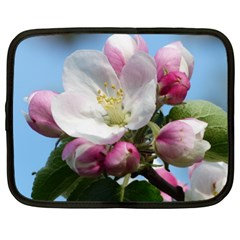 Apple Blossom  Netbook Case (XL)