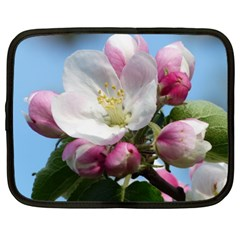 Apple Blossom  Netbook Case (XXL)