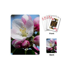 Apple Blossom  Playing Cards (Mini)