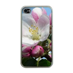 Apple Blossom  Apple Iphone 4 Case (clear)