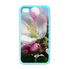 Apple Blossom  Apple Iphone 4 Case (color)