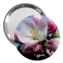 Apple Blossom  3  Handbag Mirror