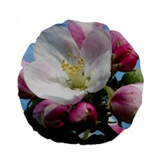 Apple Blossom  15  Premium Round Cushion
