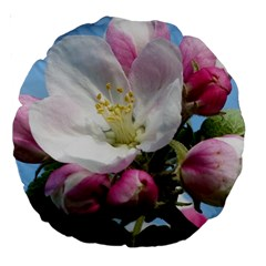 Apple Blossom  18  Premium Round Cushion
