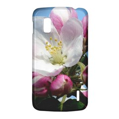 Apple Blossom  LG Nexus 4 E960 Hardshell Case