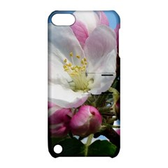 Apple Blossom  Apple iPod Touch 5 Hardshell Case with Stand