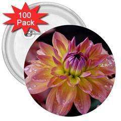 Dahlia Garden  3  Button (100 pack)