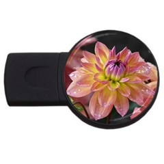 Dahlia Garden  1GB USB Flash Drive (Round)