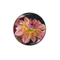 Dahlia Garden  Golf Ball Marker 10 Pack (for Hat Clip)