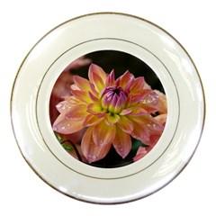 Dahlia Garden  Porcelain Display Plate
