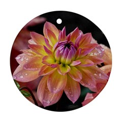 Dahlia Garden  Round Ornament (Two Sides)