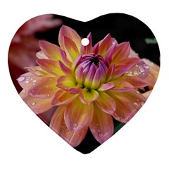 Dahlia Garden  Heart Ornament (two Sides)