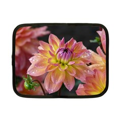 Dahlia Garden  Netbook Case (Small)