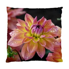 Dahlia Garden  Cushion Case (One Side)