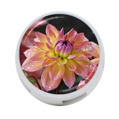 Dahlia Garden  4 Port Usb Hub (one Side)