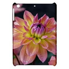 Dahlia Garden  Apple iPad Mini Hardshell Case