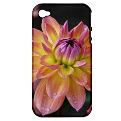 Dahlia Garden  Apple iPhone 4/4S Hardshell Case (PC+Silicone)