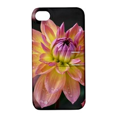 Dahlia Garden  Apple Iphone 4/4s Hardshell Case With Stand
