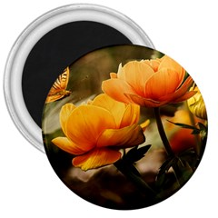Flowers Butterfly 3  Button Magnet
