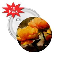 Flowers Butterfly 2.25  Button (10 pack)
