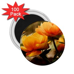 Flowers Butterfly 2 25  Button Magnet (100 Pack)