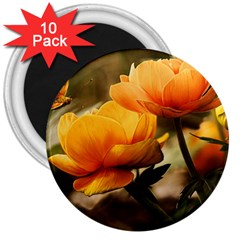 Flowers Butterfly 3  Button Magnet (10 Pack)