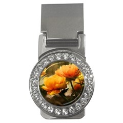 Flowers Butterfly Money Clip (CZ)