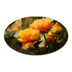 Flowers Butterfly Magnet (Oval)