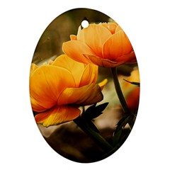 Flowers Butterfly Oval Ornament (Two Sides)