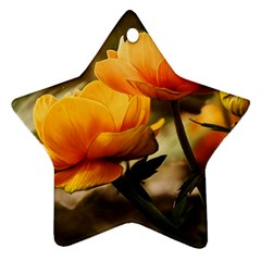 Flowers Butterfly Star Ornament (Two Sides)